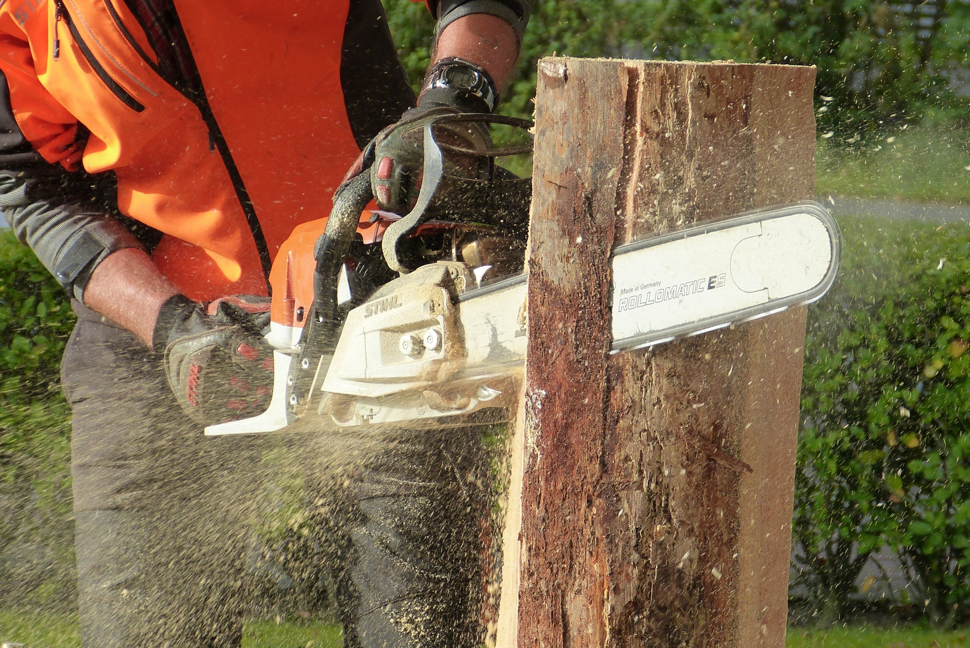 lumber jack using stihl chainsaw