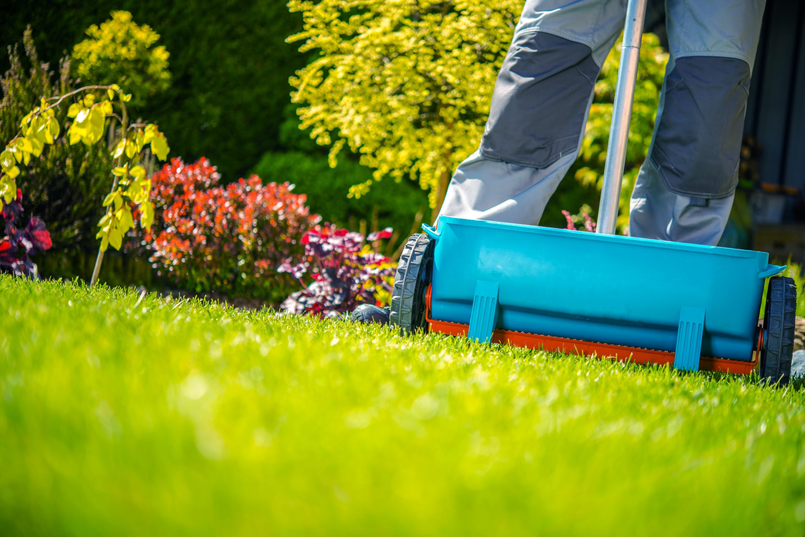 Weed Control Tips For A Greener Summer